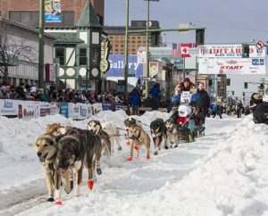 Iditarod Racer Stuck In Alaska Returns Home